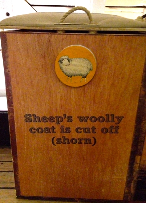 sheep's woolly coat is cut off