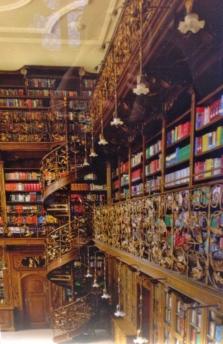 Juristiche Bibliothek (Law Library)