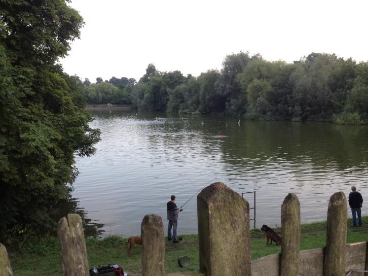 Highgate Men's Bathing Pond (men only)