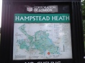 the Hampstead Heath